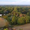 Hilltop field, forest, Woodstock