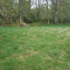 Open space camping. Grass field