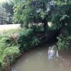 Creekside Tent/Carcamping
