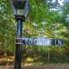 Forgotten Lane Campsite