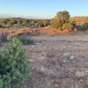 Northern Arizona Wilderness Camping