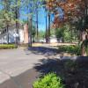 Pine Forest RV Retreat