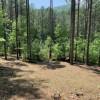 Fork Mountain Camp