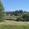 Hummingbird Ranch