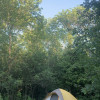 Back 2 Zen - Tent Forest Camping