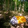 Finger Lakes 1-Person Tent Site
