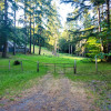 Glencove pasture and forest trails