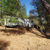 In the woods of the Sierra Foothill