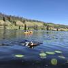 Pressy Lake RV, Tent & Bunkhouse