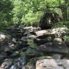 Bear Camp River Off-grid Retreat