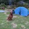 Camp Sky
