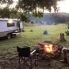 """Fig Tree"" @ Camp Creek Retreat"