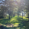 StateLIne Pine Acres Tent Camping