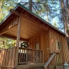 Forest Cabin with a deck