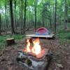 Scotch Forest tent platform