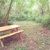 Campsite 5 shade