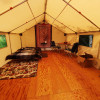 Deluxe Wall Tent in Forest Meadow