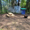 Borealis Forrest Camping