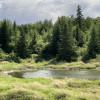 Raven's Valley Nature Retreat