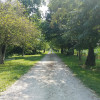 Madden Farm Campsites
