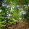 Rootstock Retreat's Healing Hill