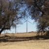 Wild Horse Ranch Desert 1