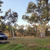 Beautiful North Queensland bushland