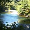 Beautiful rainforest camping along the Cowichan river