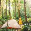 Shawl Farm Woodland Tent Sites