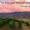 The VintageTrailer Vineyard Nevada