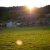 Radl Ranch