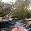 Wild Boar Bush Camp