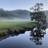 Riverwood - Pristine Otways Forest