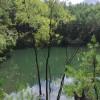Cocu camping