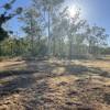 Aussie Bush Paradise