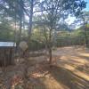 WaterOak Camp at the Garden of Eden
