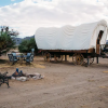 Deluxe Covered Wagon