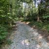 Private site near Laurel Lake