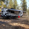 Trout Pines Camping
