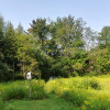 Meadow's Edge Campsite