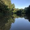 """""""Senlinyu"""" Forest Bath (Durham, NC)"""