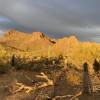 Remote Desert Oasis