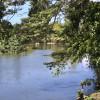Mulgrave River Camp