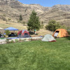 Tent sites at the Courtyard.