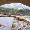 Treetop Dome- Habibi