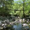 Shimmerback Ranch Creekside Magic