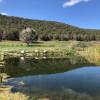 Cedar Springs Farm Camping