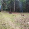 Deer Lake Forest Camp