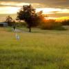 LamWood Ranch