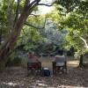 Rusty Pheasant RV Retreat